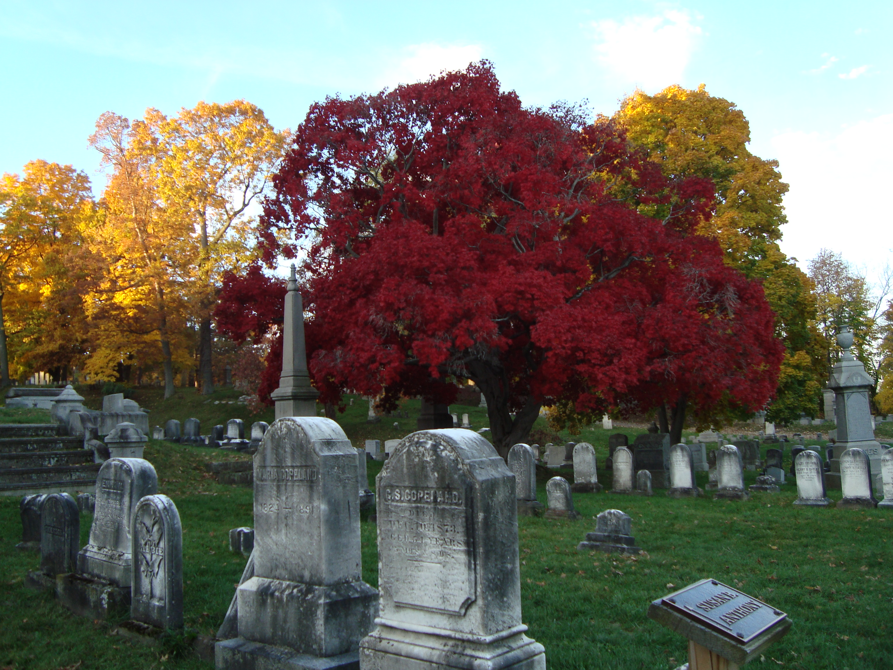 Journeys graves in – Ground Home to Our  authors